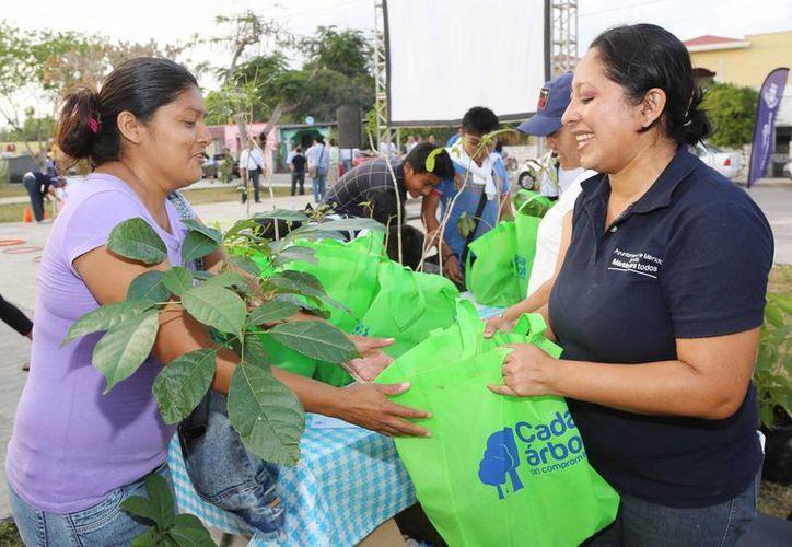 Una vecina de Komchén recibe una planta como parte del programa 'Miércoles Ciudadano más Cerca de Ti'. (Cortesía)