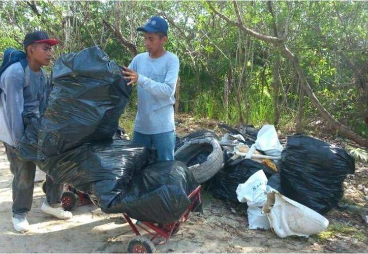 Las labores se realizaron con personal contratado por la Secretaría de Ecología y Medio Ambiente en Benito Juárez. (Cotesía)