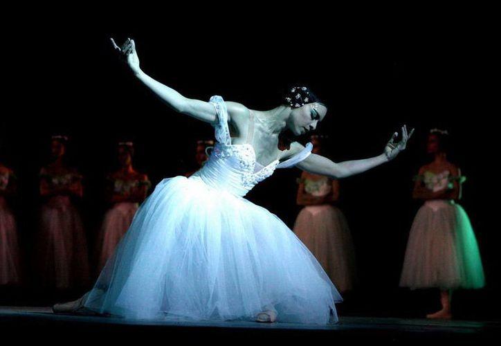 El Ballet Nacional de Cuba surge en 1948, con Alicia Alonso como principal fundadora y primerísima figura. (Redacción/SIPSE)