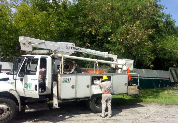 En el área de Servicios Públicos municipales se les ha notificado que se poden árboles que representan peligro a transeúntes. (Jesús Caamal/SIPSE)