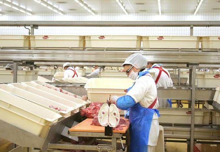 En el marco de la mejoría en las relaciones entre México y Cuba la empresa mexicana Richmeat se convirtió en la primera autorizada para invertir en la llamada zona especial de desarrollo de Mariel. (noticiasmvs.com)