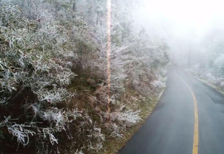 El frente frío 23 envolvió a la Sierra de Santiago, Nuevo León. (Televisa)