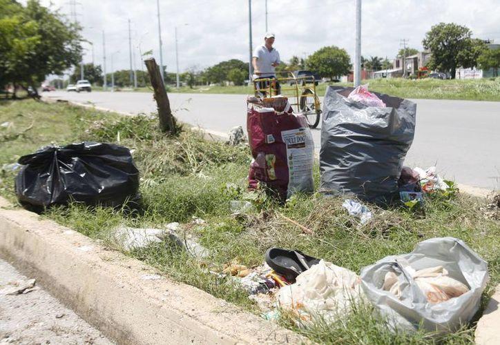 Se encuentran mínimo dos bolsas de basura afuera de las casas, y algunas esquinas con más de 10 bolsas de desperdicios. (Jesús Tijerina/SIPSE)
