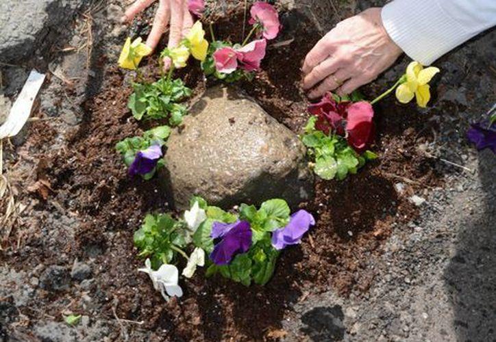 De los 10 hoyos que llenó con flores durante tres días a desde el lunes, todos ya se encuentran reparados. (AP)