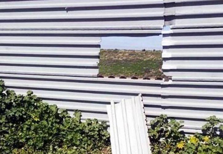 Policías de Tijuana detuvieron a un hombre que fue sorprendido cuando cortaba la lámina de la malla fronteriza. Mientras tanto en EU, un 'dreamer' fue trasladado a  un centro de detención.  (Agencias)
