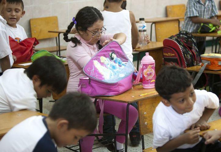 Hasta el momento no hay nada concreto sobre la póliza de seguro escolar. (Víctor Ruiz/SIPSE)