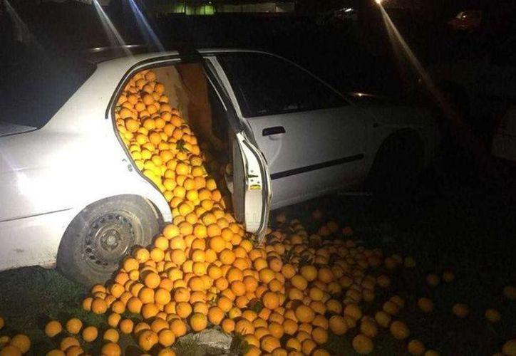 Los vehículos en los que viajaban los culpables, estaban cargados de gran cantidad de naranjas. (Foto: La Vanguardia)
