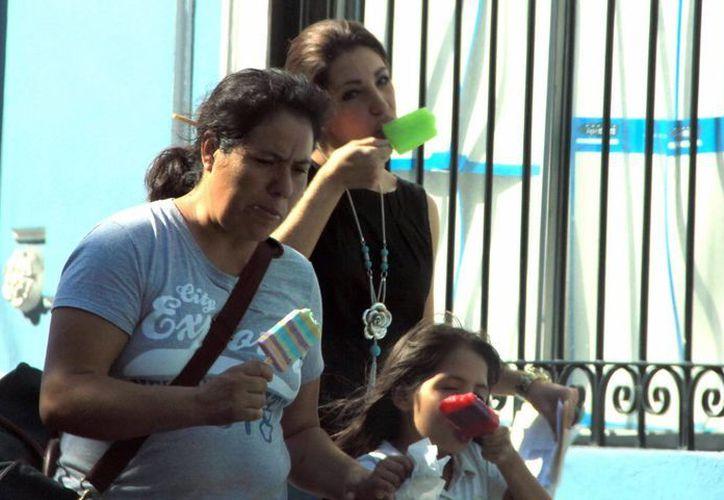 Las autoridades recomiendan hidratarse esta temporada. (José Acosta/SIPSE)
