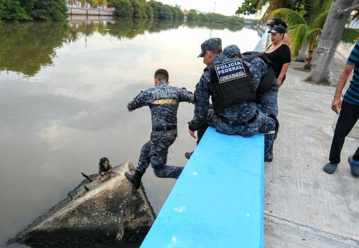 Uno de los elementos federales se quitó la camisola de su uniforme y cruzó el canal. Foto: Redacción