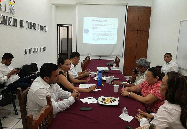 La presidenta de la Acluvaq se reunió con los regidores de la Comisión de Turismo y Ecología del Ayuntamiento de Benito Juárez. (Paola Chiomante/SIPSE)