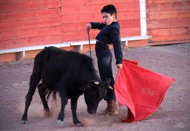 Imagen de Cristóbal Arenas, 'El Maletilla', quien participa en las corridas de toros con tan solo 10 años de edad. (Óscar Aguilera/twitter.com/luisgallardo_1)