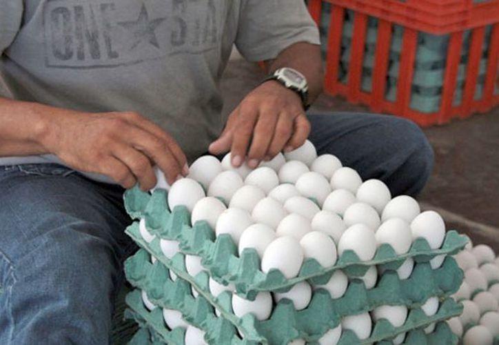 El precio del casillero de huevo, que contiene 30 unidades, oscila entre los 48 y 59 pesos. (Francisco Sansores/SIPSE)