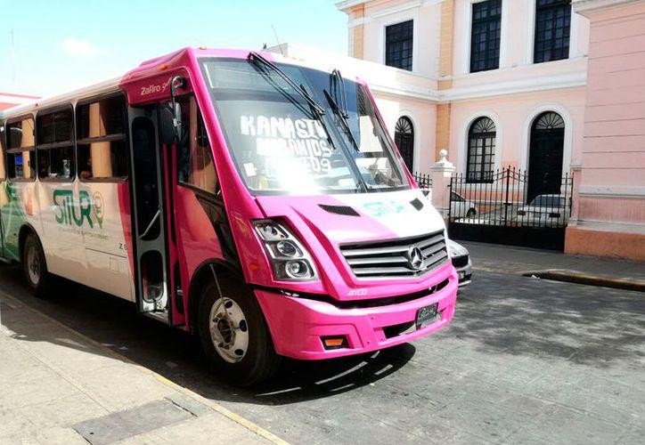 En los próximos días Circuito Kanasín estrenaría 16 nuevos camiones. (Milenio Novedades)