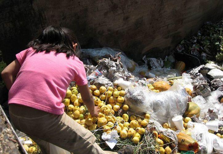 La subida de precios de la comida y las materias primas apremiará la necesidad de reducir el desperdicio. (oem.com.mx)