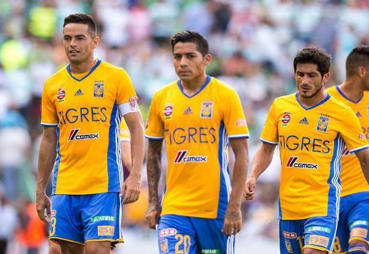 Tigres fichó de última hora al portero Eduardo Fernández. (Mexsport).