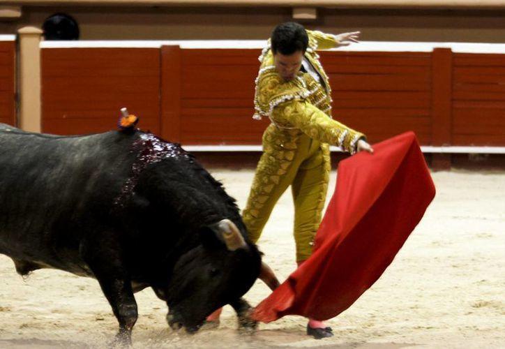 La prohibición de la entrada de menores a corridas de toros en León levantó polémica sobre el tema de la educación de los hijos entre los regidores. (Archivo/Notimex)