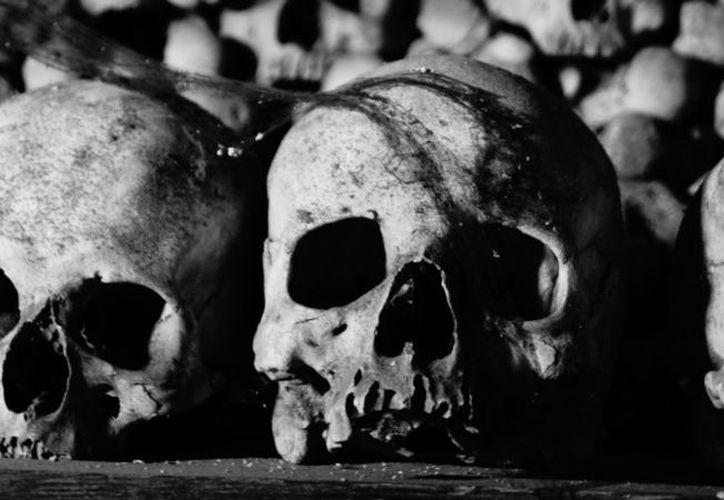 La Comunidad de Madrid encargará un estudio antropológico con vistas a determinar la fisonomía y las causas de la muerte de las personas. (RT)