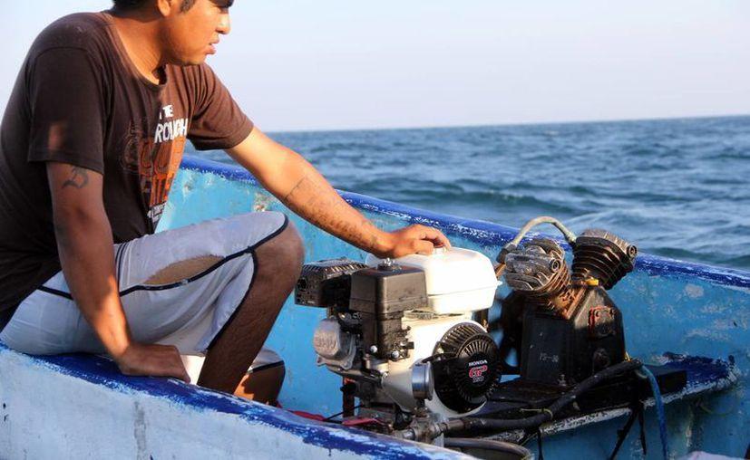 En alta mar la vida de los buzos depende de su destreza y conocimientos y de la coordinación de todo su equipo. Foto de Juan Carlos Pech León, de 42 años, que bucea desde hace 10. (Milenio Novedades)