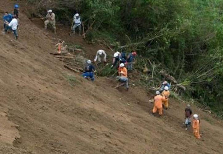 El accidente ocurrió el lunes al finalizar la tarde en las cercanías de la localidad de Caranavi. (Foto de contexto/ultimasnoticias.com.ve)