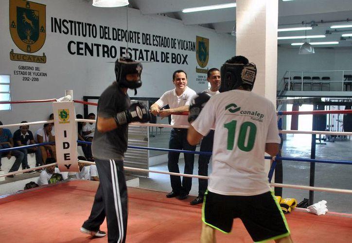 Los estudiantes boxeadores del Conalep cuentan con la supervisión del excampeón mundial de peso pluma Gustavo Espadas Espinosa, quien aparece semioculto. (Milenio Novedades)