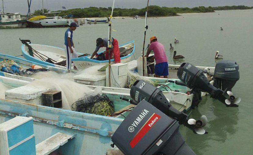 El Instituto Nacional de Pesca busca dar elementos científicos sólidos a los pescadores para que puedan prever sus actividades y reducir riesgos al anticiparse a mareas rojas. (SIPSE)