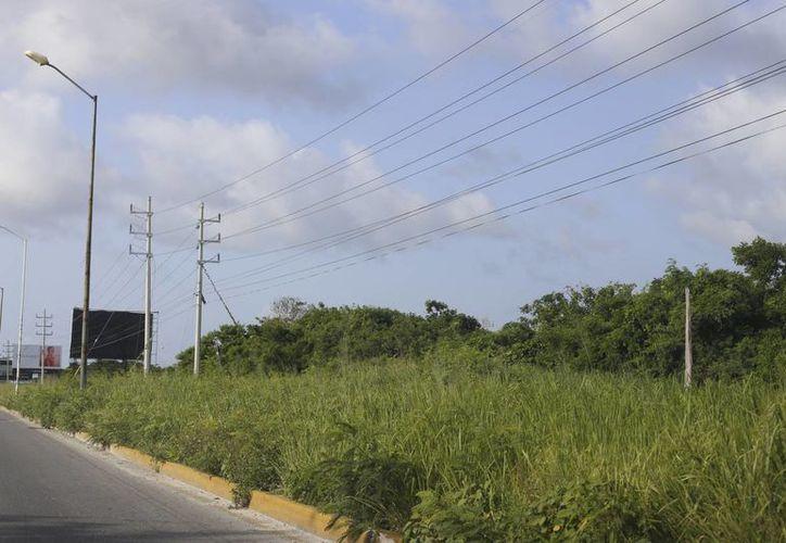 El terreno se encuentra entre el bulevar Luis Donaldo Colosio y el sistema lagunar. (Israel Leal/SIPSE)
