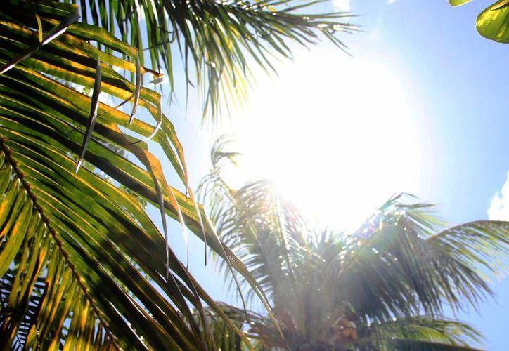 Las autoridades advierten sobre los síntomas que ocasiona un golpe de calor, debido a las altas temperaturas que se empiezan a registrar. (Rossy López/SIPSE)