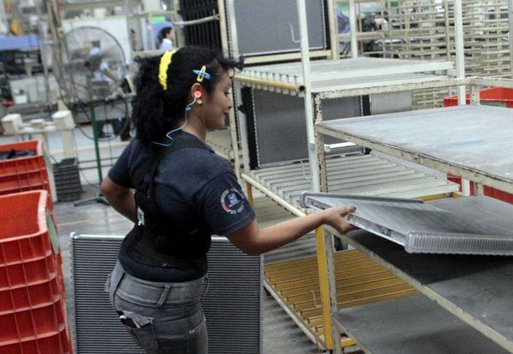 Se concientiza a empleados sobre los riesgos de trabajo. (Milenio Novedades)
