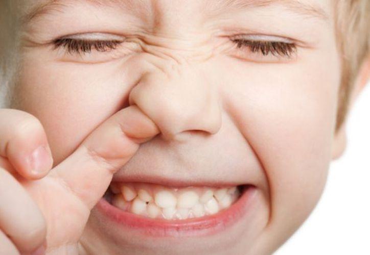 Los principales beneficios están en la prevención de daños dentales.  (Xataca Ciencia)