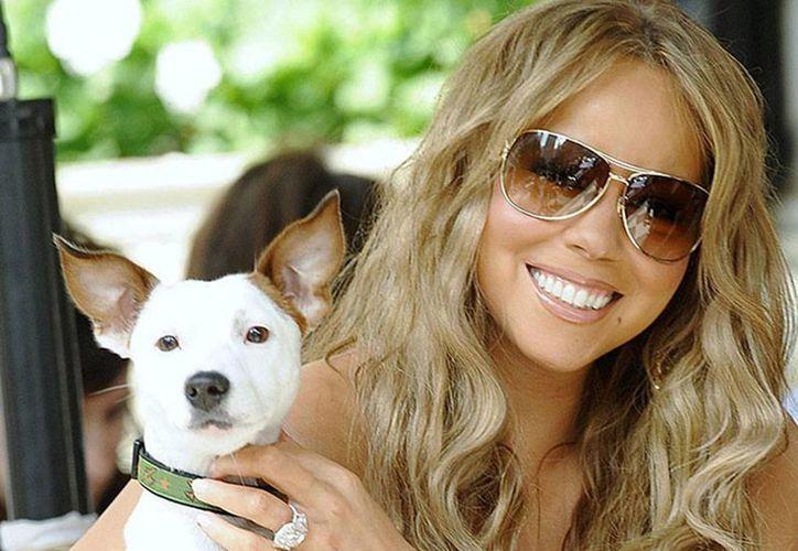 Innegables los amores perros de Mariah Carey: ¿quién paga 200,000 dólares por enviarlos de vacaciones a Europa? (imagen de contexto/excelsior.com.mx)