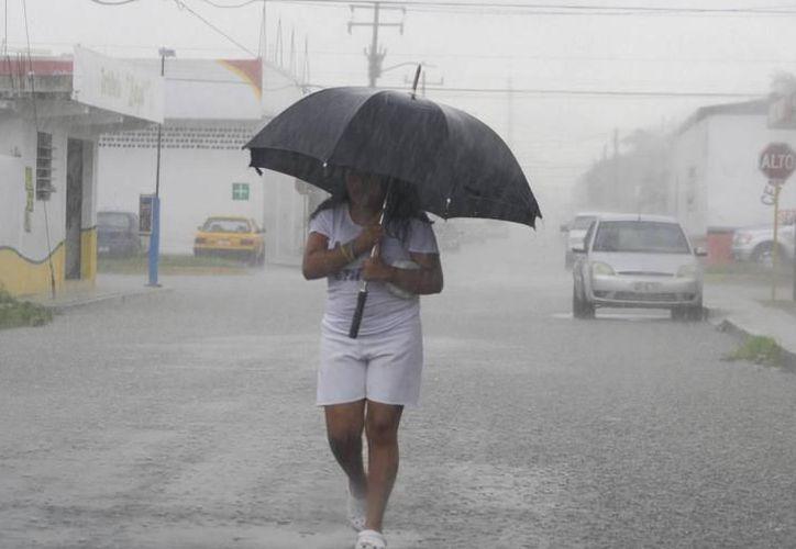 Las lluvias vespertinas 'amenazan' a la entidad en esta tarde. (Milenio Novedades)
