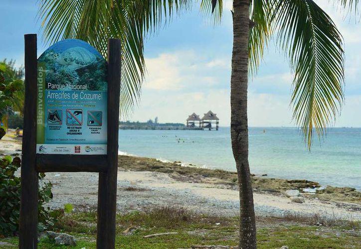 El Parque Marino Arrecifes de Cozumel tiene una superficie de 11 mil hectáreas. (Gustavo Villegas/SIPSE)