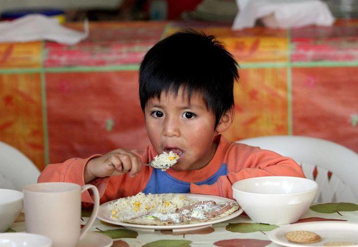 La Fundación Mexicana para el Desarrollo Rural atiende a menores con desnutrición debido al bajo consumo de alimentos de origen animal.  (Imagen referencial/Archivo/Notimex)