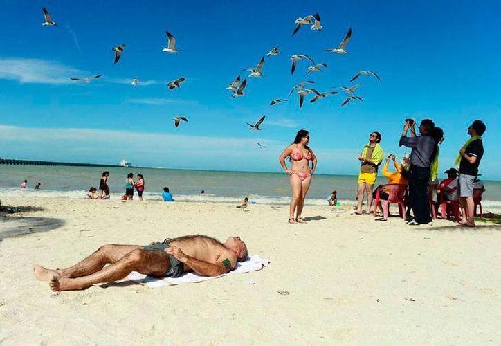 De acuerdo al empresario turístico José Manuel López Campos la derrama económica en playas yucatecas fue menor la semana pasada debido al Mundial. (Milenio Novedades)