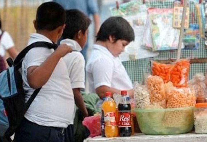 Las tabletas contienen instalada la aplicación MercaDIFto, juego interactivo para que niños conozcan la importancia de comer bien. (SIPSE)