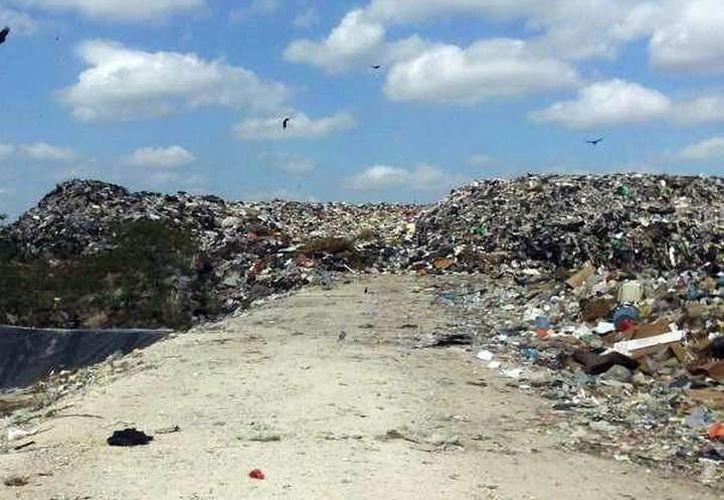 La población de Flamboyanes se enfrenta día con día a los riesgos que representa el depósito de basura al aire libre. (SIPSE)