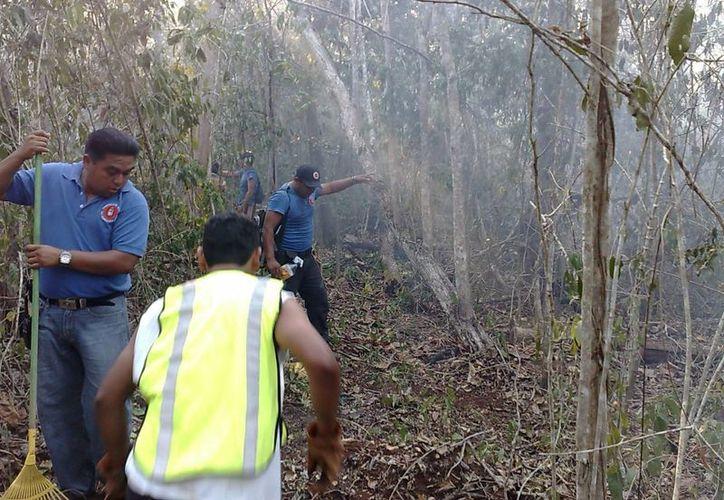 El incendio fue aparentemente provocado por un cazador furtivo; las llamas consumieron cerca de 15 hectáreas. (Manuel Salazar/SIPSE)