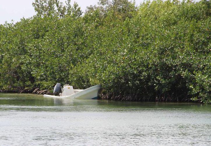 El censo facilitará el proceso de limpieza en la laguna Nichupteé. (Tomás Álvarez/SIPSE)