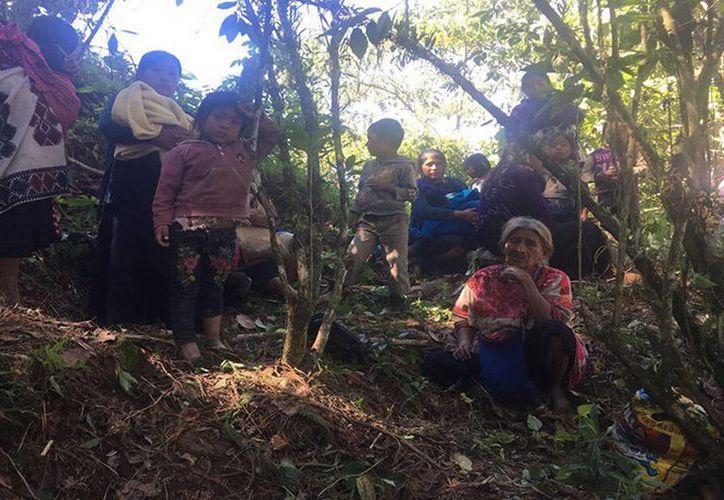 Familias enteras, más de mil personas, son obligadas a dormir bajo árboles o en cuevas. (Foto: El Sol de Córdova)
