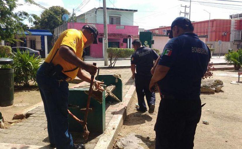 Protección Civil desmanteló juegos infantiles en el parque de la colonia Zazil Há, de Playa del Carmen. (Adrián Barreto/SIPSE)