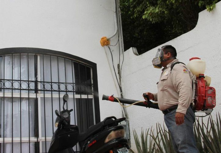 El personal continúa con programas de fumigación. (Luis Soto/SIPSE)