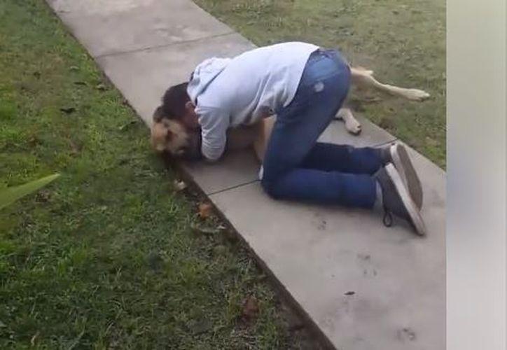 Al ver al can, el adolescente salió a su jardín y abrazó a su 'mejor amigo'. (Foto: Facebook)