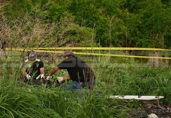 El cuerpo fue hallado en los montes ubicados detrás de la Central de Abastos. (Victoria González/SIPSE)