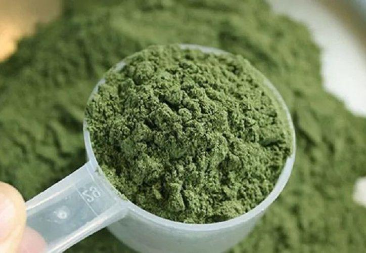 Kratom es usado como suplemento alimenticio. (Tierra Kratom)