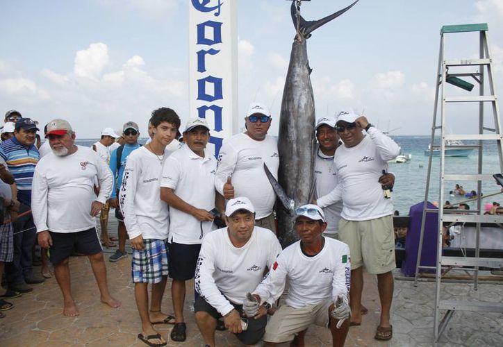 En el primer día de competencia se capturó un gran marlín azul con un peso de 78 kilos. (Raúl Caballero/SIPSE)
