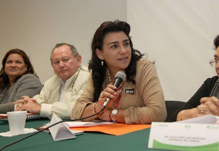 La presidenta del DIF estatal, Sarita Blancarte de Zapata. (SIPSE)