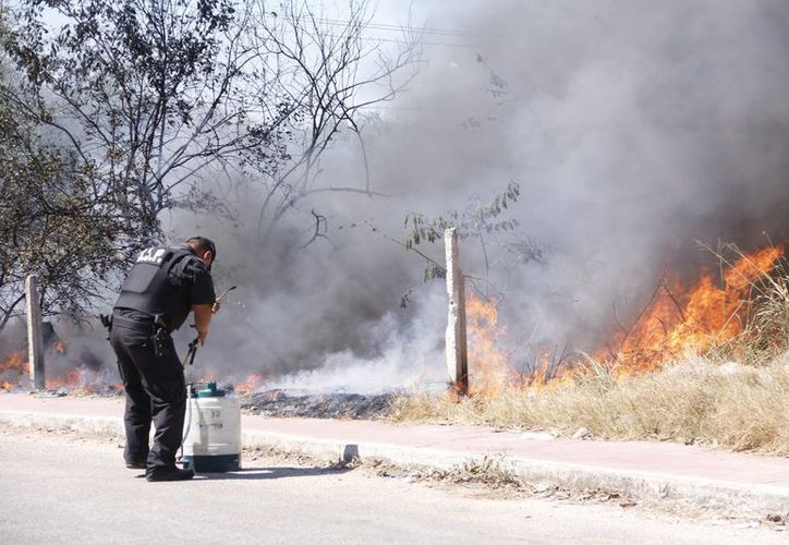 Se avizora una intensa temporada de incendios. (Juan Albornoz/SIPSE)