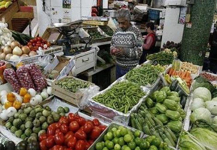 Los precios de las frutas y verduras subieron 3.68% en la primera quincena de agosto en comparación con la anterior. (Milenio)