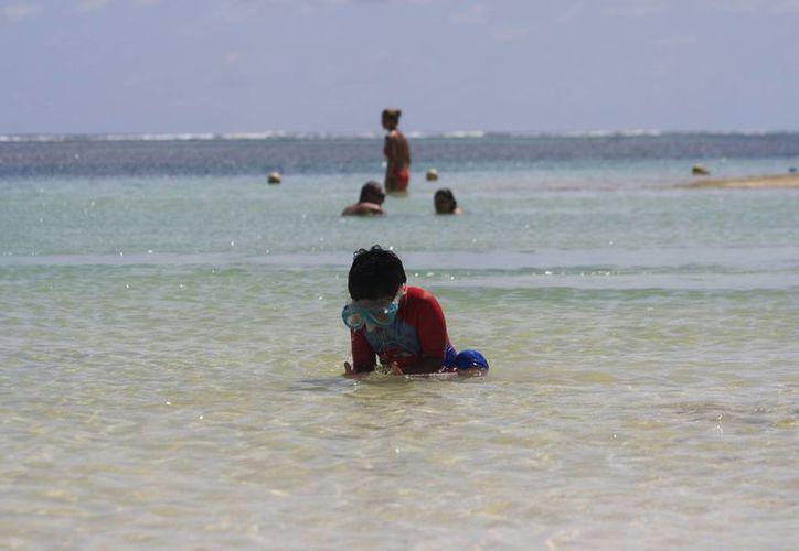 La actividad turística registra una baja considerable, esperan que repunte a fin de año. (Ángel Castilla/SIPSE)