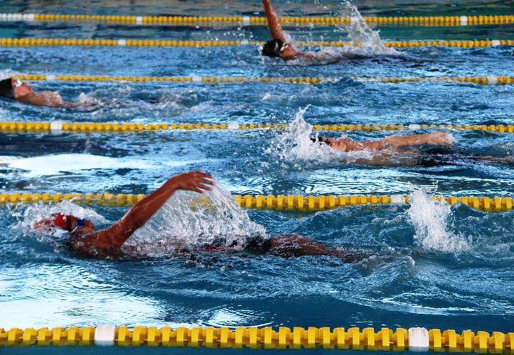 Buscan a nuevos talentos en natación para conformar el selectivo del estado. (Raúl Caballero/SIPSE)